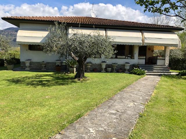 House with big lot in Pietrasanta