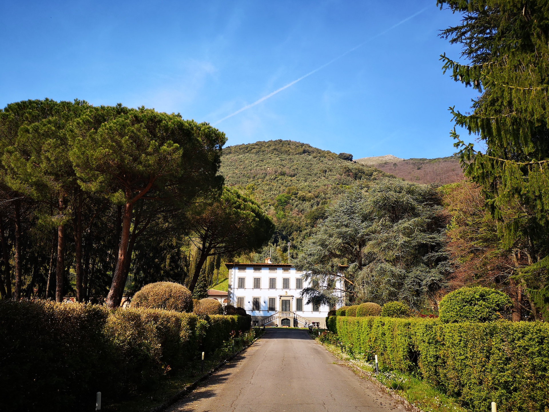 Aristocratic villa in Versilia